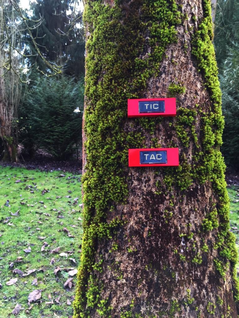 Chip and Dale« Tic et Tac» – Le Sonneur – 2015 – Forêt de Retz
