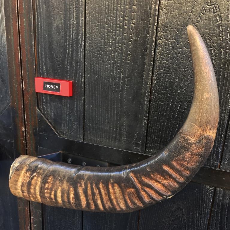 Longhorn Babe « Honey » – Washington, D.C. – 2015 – Le Sonneur
